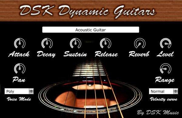 DSK Dynamic Guitars 3
