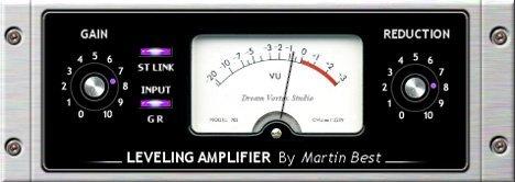 DVS Leveling Amp 2