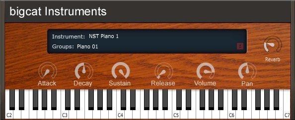 NST Pianos 3