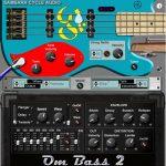 Om Bass II 3