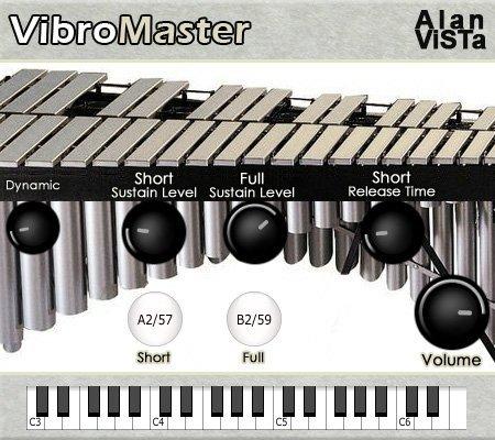 VibroMaster 2