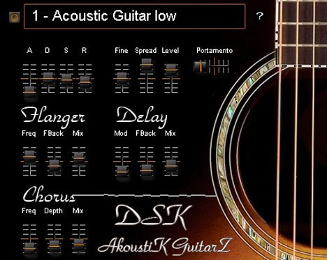 dsk akoustik guitarz2